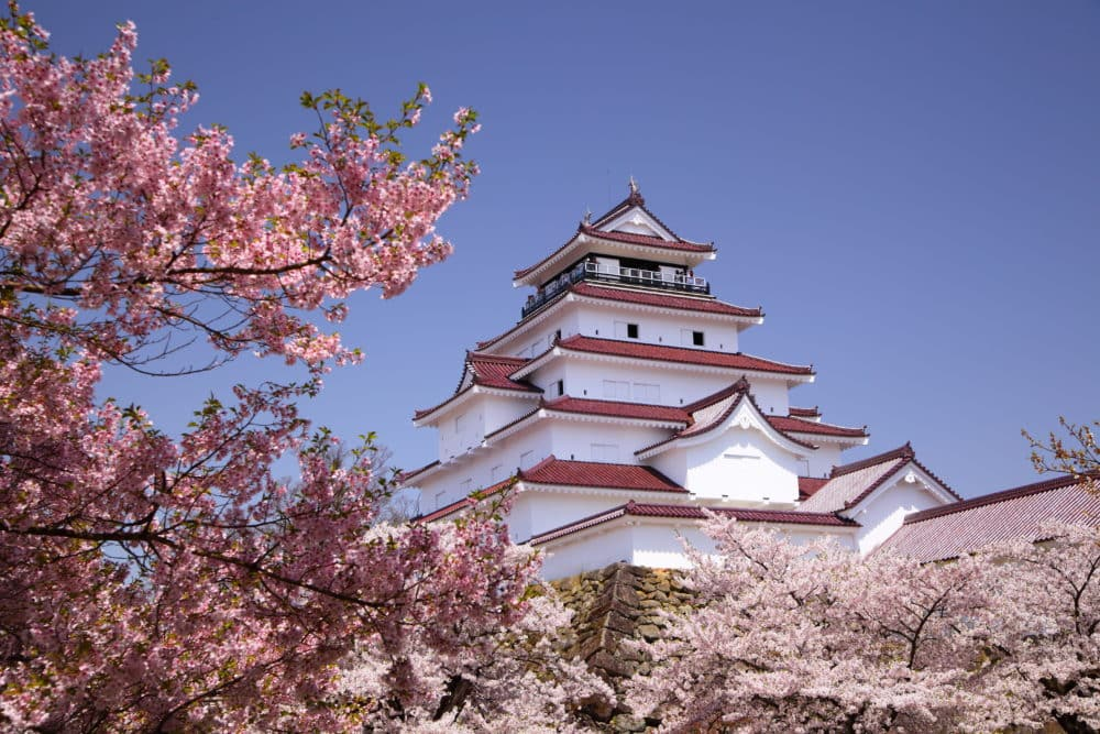 Aizuwakamatsu Castle and cherry blossom in Fukushima, Japan